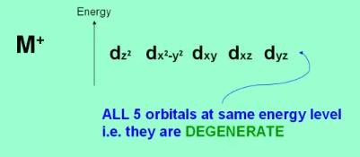 CFT 5 Orbitals